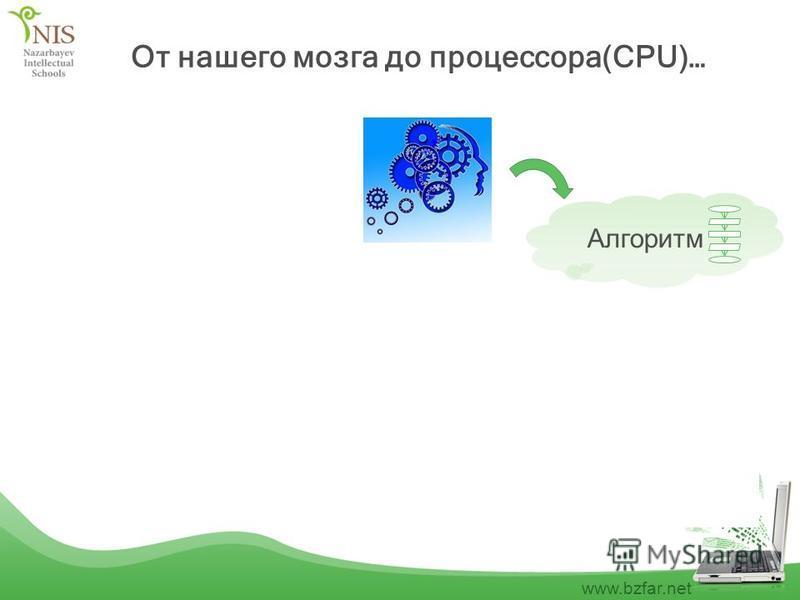 www.bzfar.net От нашего мозга до процессора(CPU)… Алгоритм