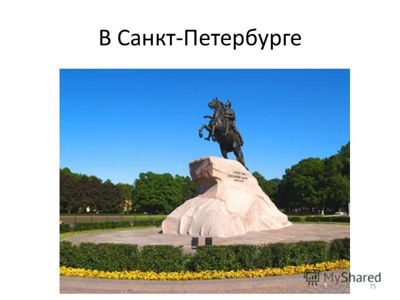 В Санкт-Петербурге 75