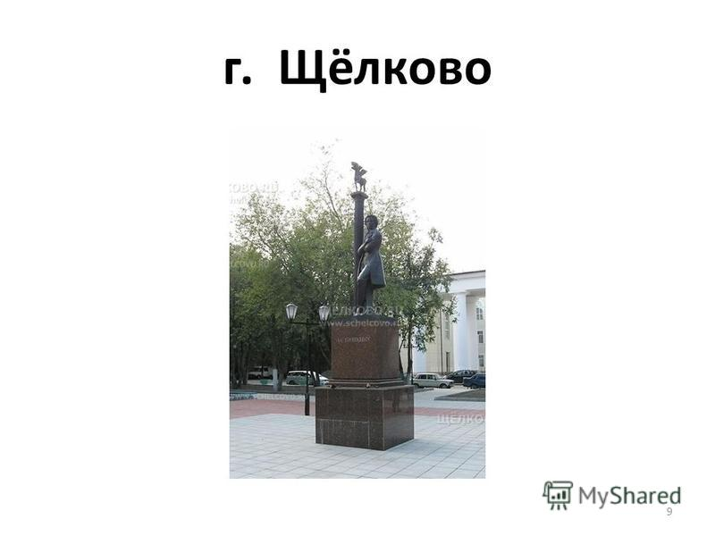 г. Щёлково 9
