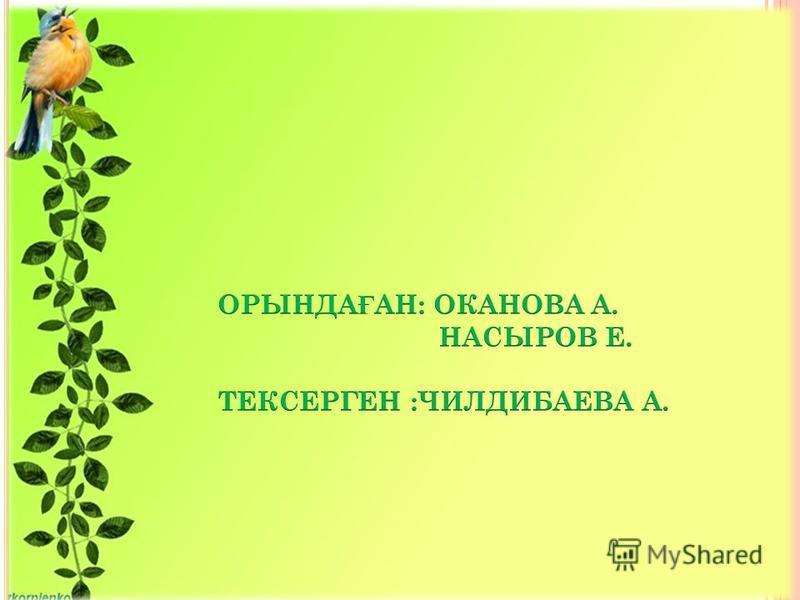 ТЕКСЕРГЕН: ЧИЛДИБАЕВА АСЕЛЬ ОРЫНДА Ғ АН: ОКАНОВА АЙДАНА НАСЫРОВ ЕРІК