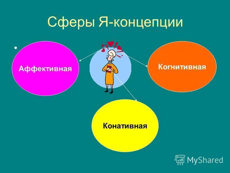Сферы Я-концепции. Аффективная Когнитивная Конативная