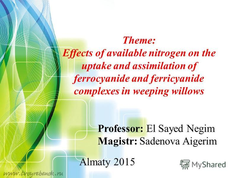 Professor: El Sayed Negim Magistr: Sadenova Aigerim Almaty 2015 Theme: Effects of available nitrogen on the uptake and assimilation of ferrocyanide and ferricyanide complexes in weeping willows