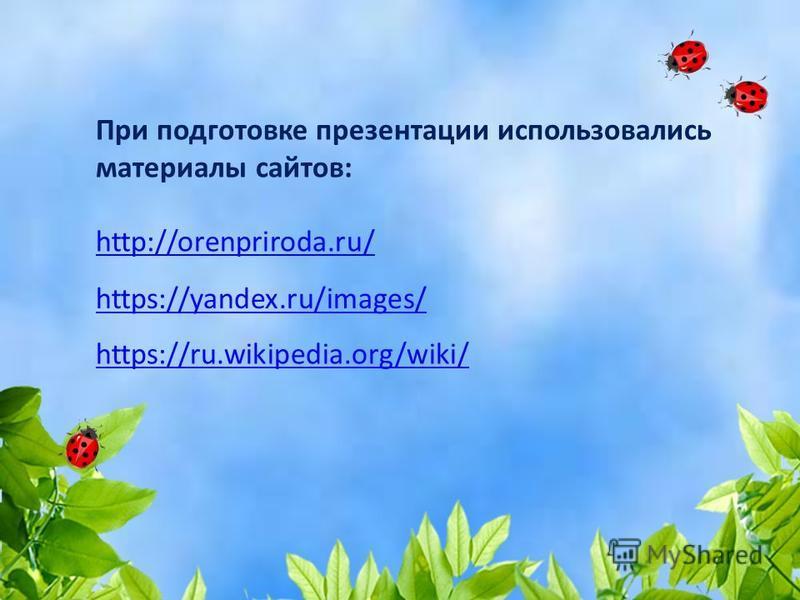 При подготовке презентации использовались материалы сайтов: http://orenpriroda.ru/ http://orenpriroda.ru/ https://ru.wikipedia.org/wiki/ https://yandex.ru/images/