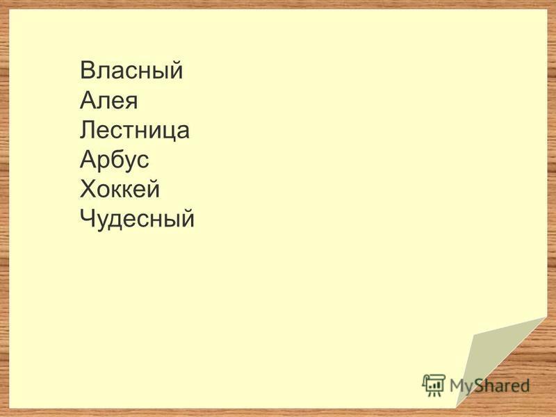 Власный Алея Лестница Арбус Хоккей Чудесный