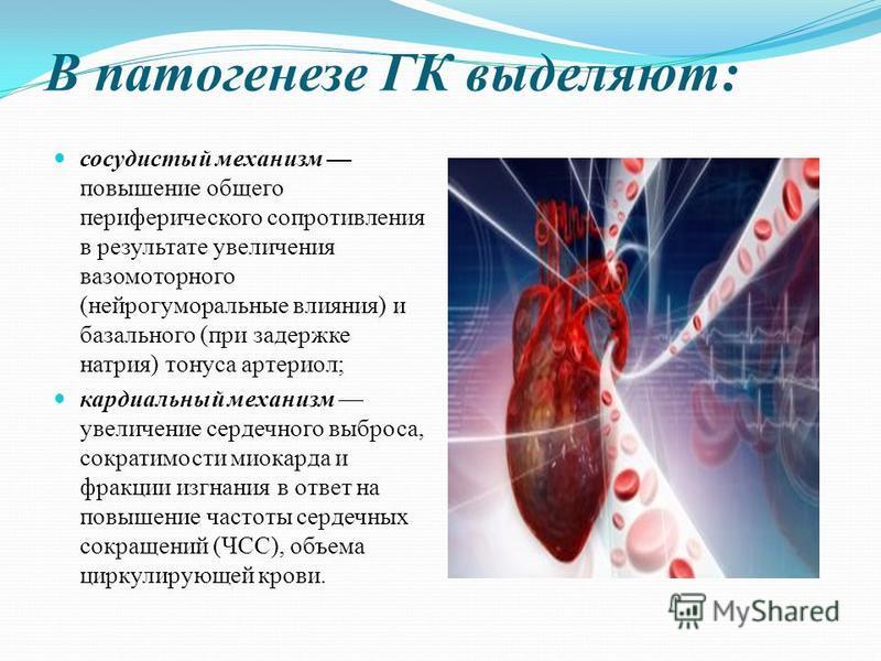 В патогенезе ГК выделяют: сосудистый механизм повышение общего периферического сопротивления в результате увеличения вазомоторного (нейрогуморальные влияния) и базального (при задержке натрия) тонуса артериол; кардиальный механизм увеличение сердечно