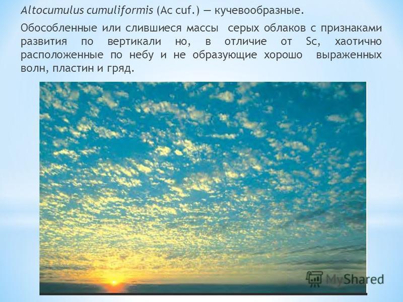 Altocumulus cumuliformis (Ac cuf.) кучевообразные. Обособленные или слившиеся массы серых облаков с признаками развития по вертикали но, в отличие от Sc, хаотично расположенные по небу и не образующие хорошо выраженных волн, пластин и гряд.