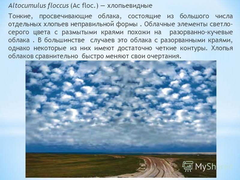 Altocumulus floccus (Ac floc.) хлопьевидные Тонкие, просвечивающие облака, состоящие из большого числа отдельных хлопьев неправильной формы. Облачные элементы светло- серого цвета с размытыми краями похожи на разорванно-кучевые облака. В большинстве