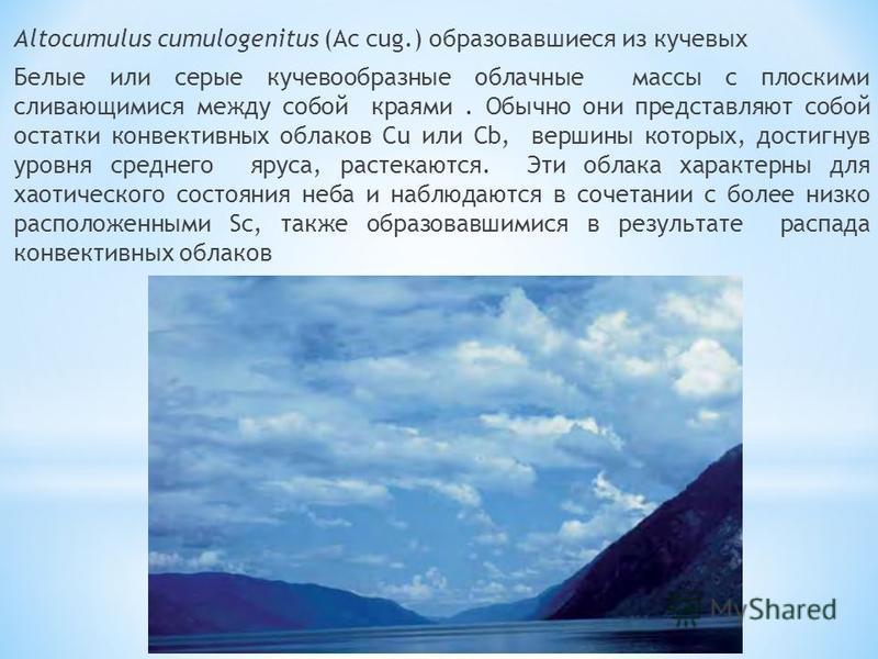 Altocumulus cumulogenitus (Ac cug.) образовавшиеся из кучевых Белые или серые кучевообразные облачные массы с плоскими сливающимися между собой краями. Обычно они представляют собой остатки конвективных облаков Cu или Cb, вершины которых, достигнув у