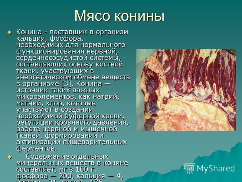 Мясо конины Конина - поставщик в организм кальция, фосфора, необходимых для нормального функционирования нервной, сердечно сосудистой системы, составляющих основу костной ткани, участвующих в энергетическом обмене веществ в организме [3]. Конина исто