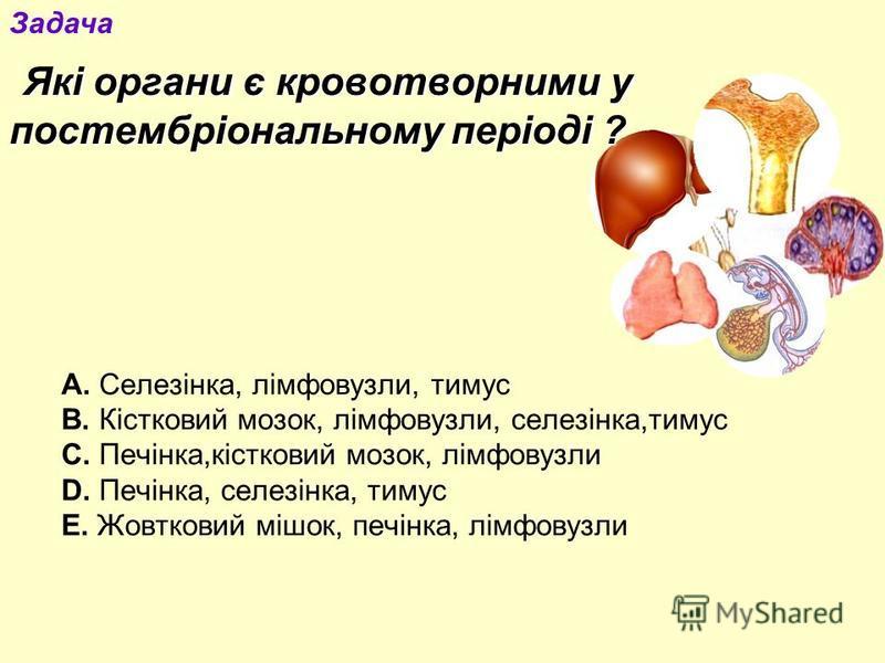Які органи є кровотворними у постембріональному періоді ? А. Селезінка, лімфовузли, тимус В. Кістковий мозок, лімфовузли, селезінка,тимус С. Печінка,кістковий мозок, лімфовузли D. Печінка, селезінка, тимус Е. Жовтковий мішок, печінка, лімфовузли Зада