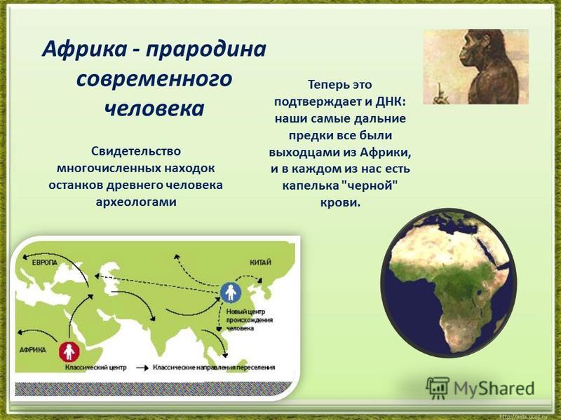 Африка - прародина современного человека Свидетельство многочисленных находок останков древнего человека археологами Теперь это подтверждает и ДНК: наши самые дальние предки все были выходцами из Африки, и в каждом из нас есть капелька