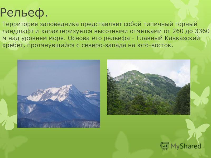 Рельеф. Территория заповедника представляет собой типичный горный ландшафт и характеризуется высотными отметками от 260 до 3360 м над уровнем моря. Основа его рельефа - Главный Кавказский хребет, протянувшийся с северо-запада на юго-восток.