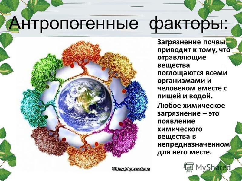 Антропогенные факторы: Загрязнение почвы приводит к тому, что отравляющие вещества поглощаются всеми организмами и человеком вместе с пищей и водой. Любое химическое загрязнение – это появление химического вещества в непредназначенном для него месте.