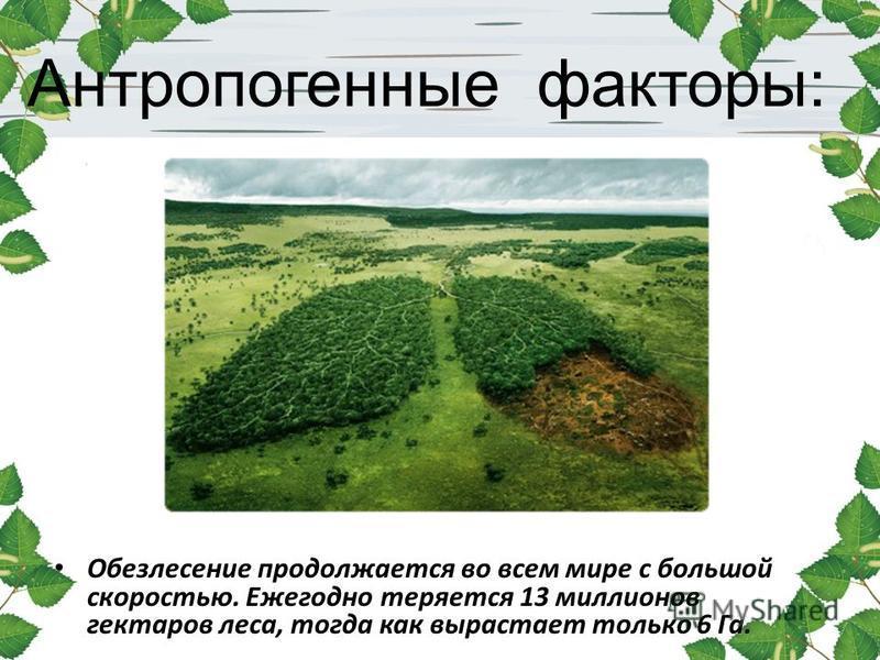 Антропогенные факторы: Обезлесение продолжается во всем мире с большой скоростью. Ежегодно теряется 13 миллионов гектаров леса, тогда как вырастает только 6 Га.