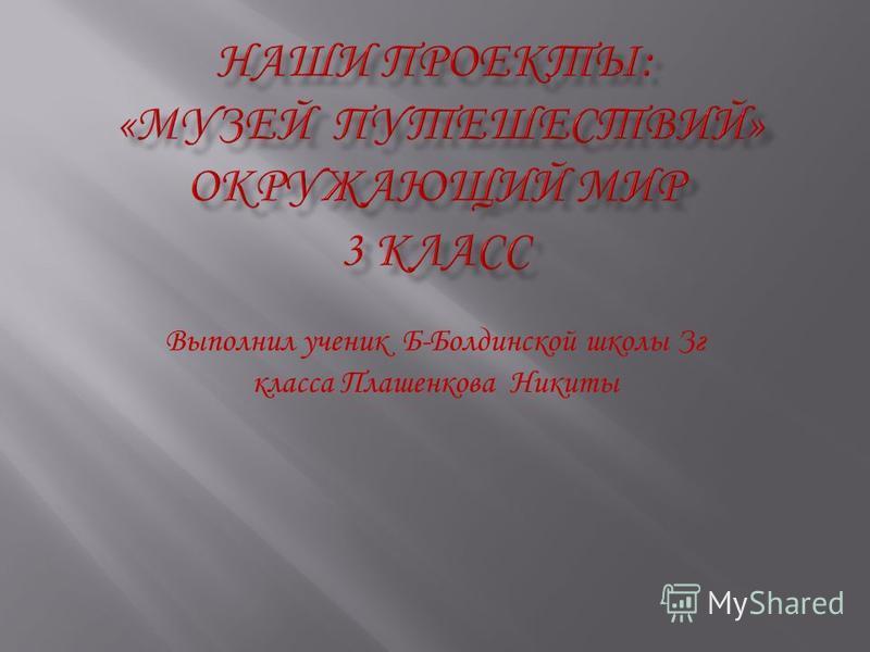 Выполнил ученик Б-Болдинской школы Зг класса Плашенкова Никиты