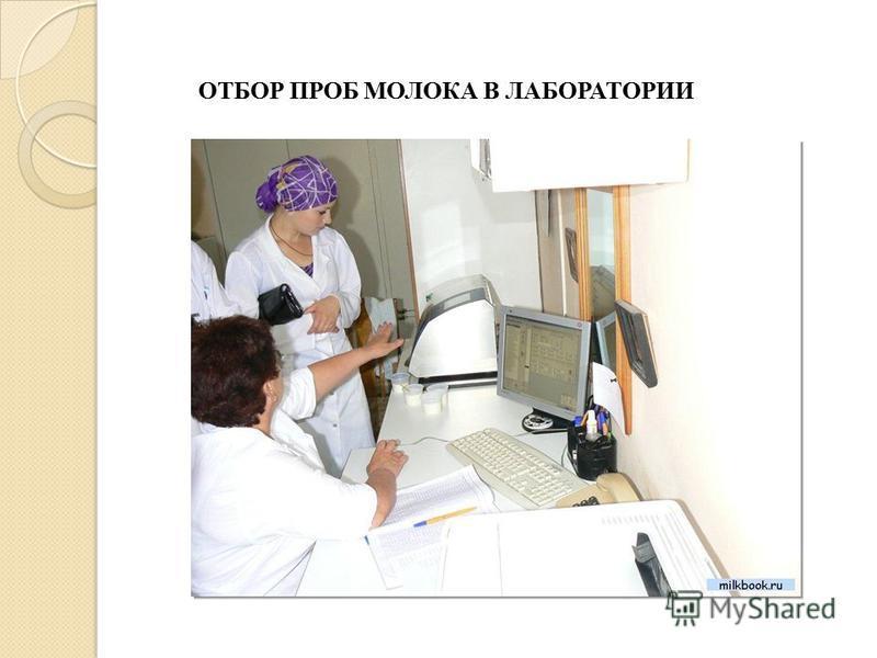 ОТБОР ПРОБ МОЛОКА В ЛАБОРАТОРИИ