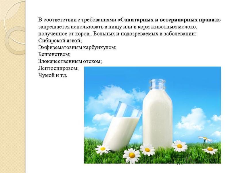 В соответствии с требованиями «Санитарных и ветеринарных правил» запрещается использовать в пищу или в корм животным молоко, полученное от коров,. Больных и подозреваемых в заболевании: Сибирской язвой; Эмфизематозным карбункулом; Бешенством; Злокаче