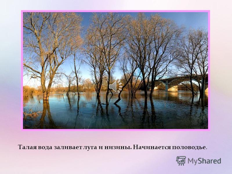 Лед на реках, прудах и озерах покрывается трещинами, становится рыхлым. В конце апреля реки вскрываются, начинается ледоход. Льдины плывут по реке, с треском ломаются.