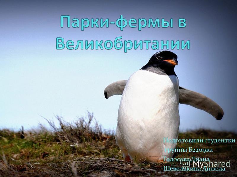 Подготовили студентки группы Б2209 ка Голосова Диана Шевелькина Анжела