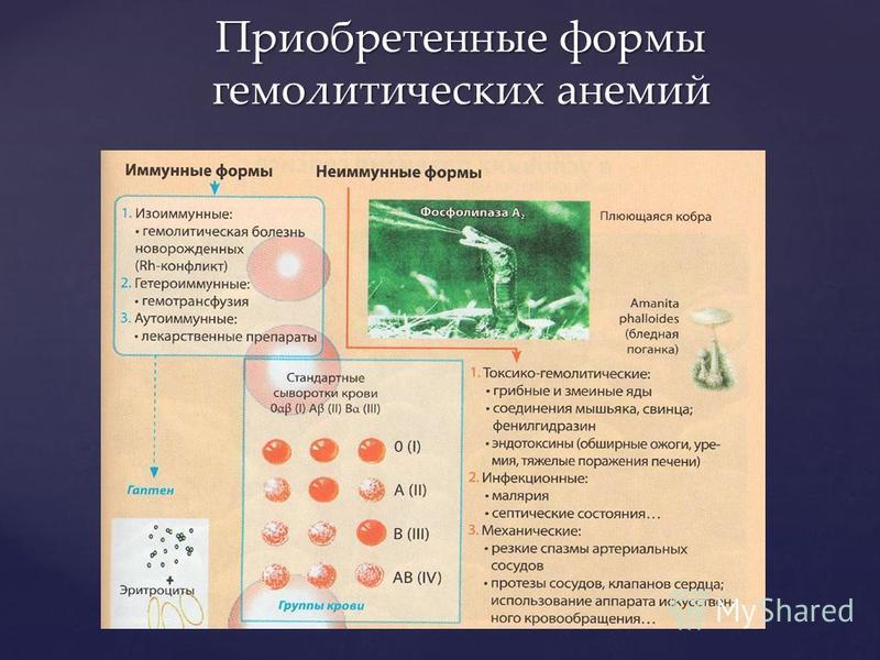 Приобретенные формы гемолитических анемий