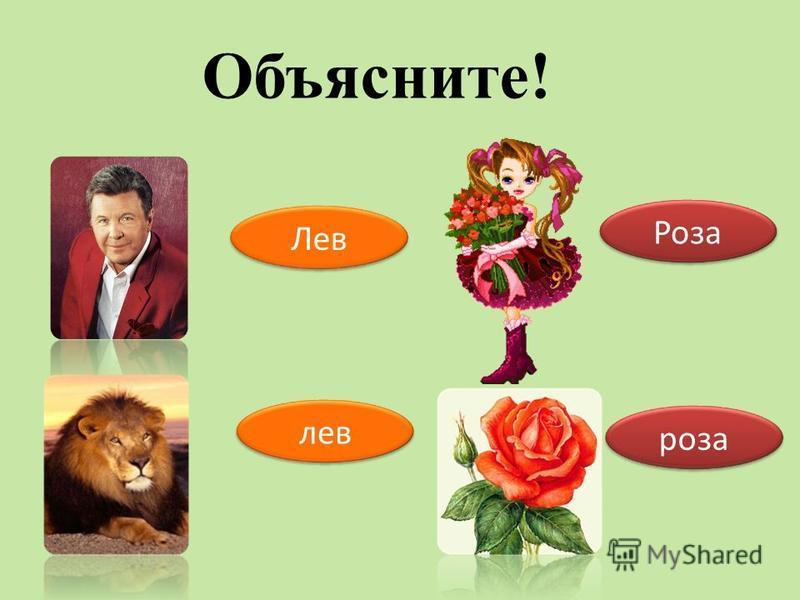 Роза роза Лев лев Объясните!