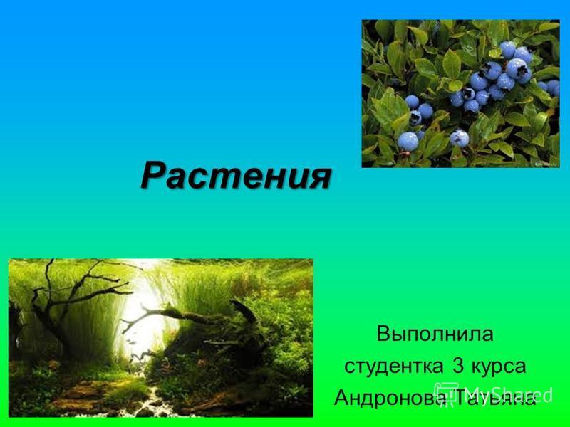 Растения Выполнила студентка 3 курса Андронова Татьяна