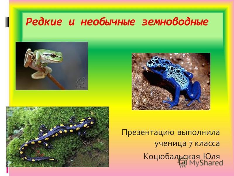 Редкие и необычные земноводные Презентацию выполнила ученица 7 класса Коцюбальская Юля