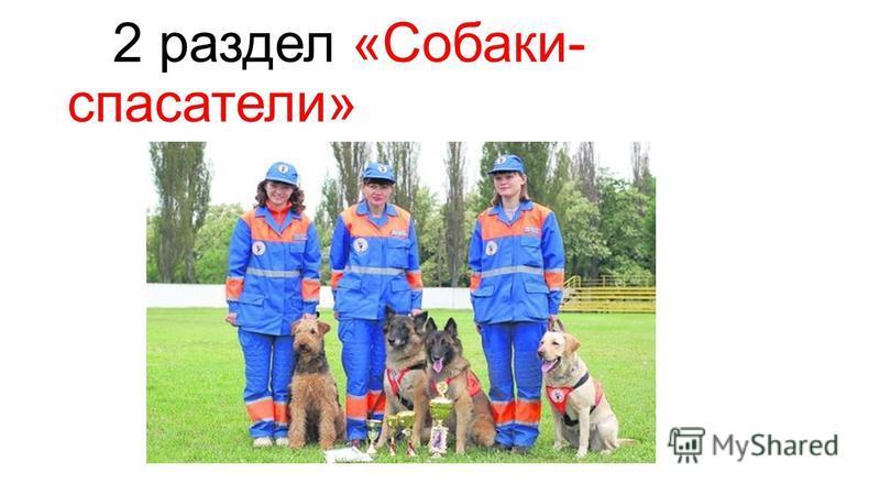 2 раздел «Собаки- спасатели»