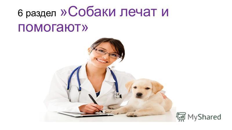6 раздел »Собаки лечат и помогают»