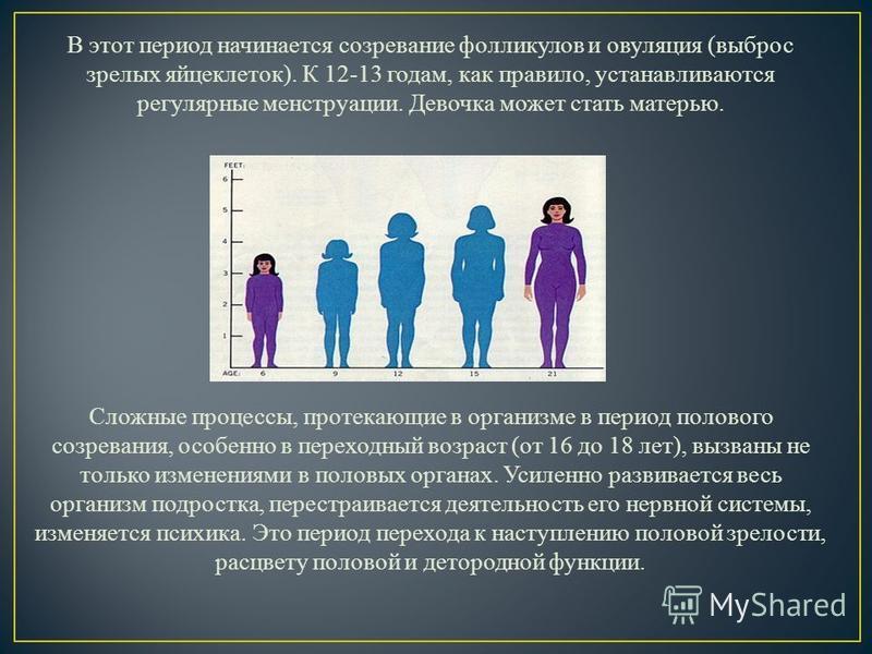 В этот период начинается созревание фолликулов и овуляция (выброс зрелых яйцеклеток). К 12-13 годам, как правило, устанавливаются регулярные менструации. Девочка может стать матерью. Сложные процессы, протекающие в организме в период полового созрева