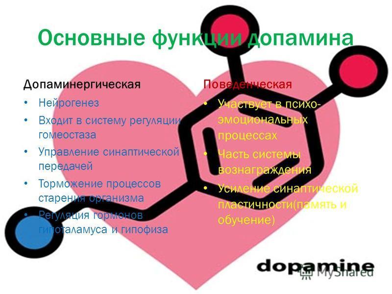 Основные функции дофамина Допаминергическая Нейрогенез Входит в систему регуляции гомеостаза Управление синаптической передачей Торможение процессов старения организма Регуляция гормонов гипоталамуса и гипофиза Поведенческая Участвует в психо- эмоцио