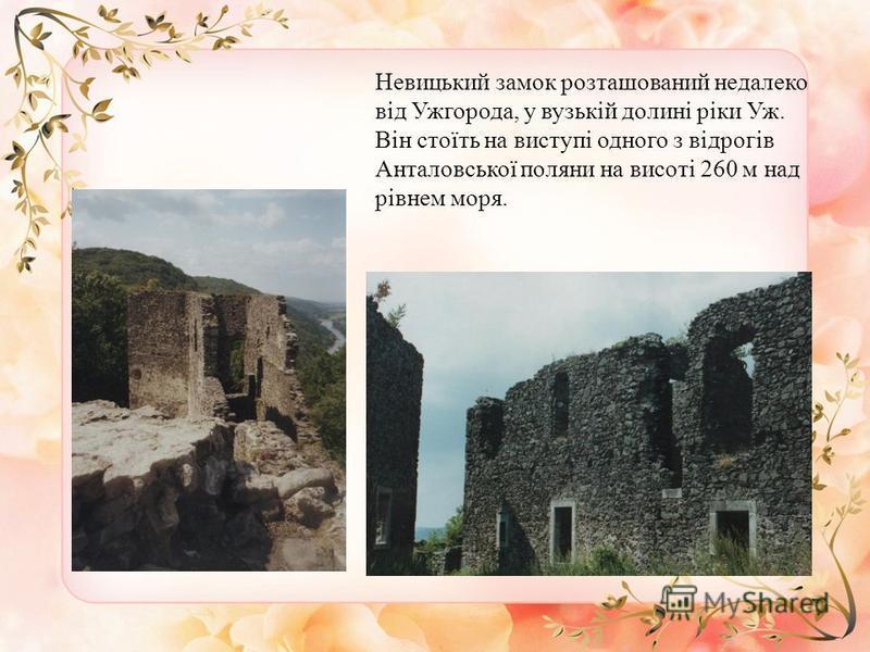 Невицький замок розташований недалеко від Ужгорода, у вузькій долині ріки Уж. Він стоїть на виступі одного з відрогів Анталовської поляни на висоті 260 м над рівнем моря.