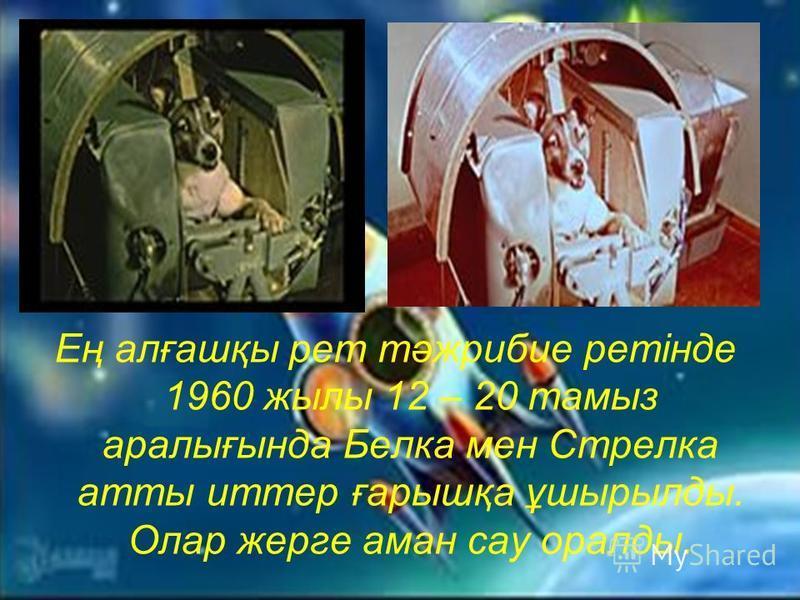 Ең алғашқы рет тәжрибие ретінде 1960 жылы 12 – 20 тамыз аралығында Белка мен Стрелка атты иттер ғарышқа ұшырылды. Олар жерге аман сау оралды.