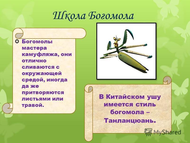 Богомолы мастера камуфляжа, они отлично сливаются с окружающей средой, иногда да же притворяются листьями или травой. В Китайском ушу имеется стиль богомола – Танланцюань.