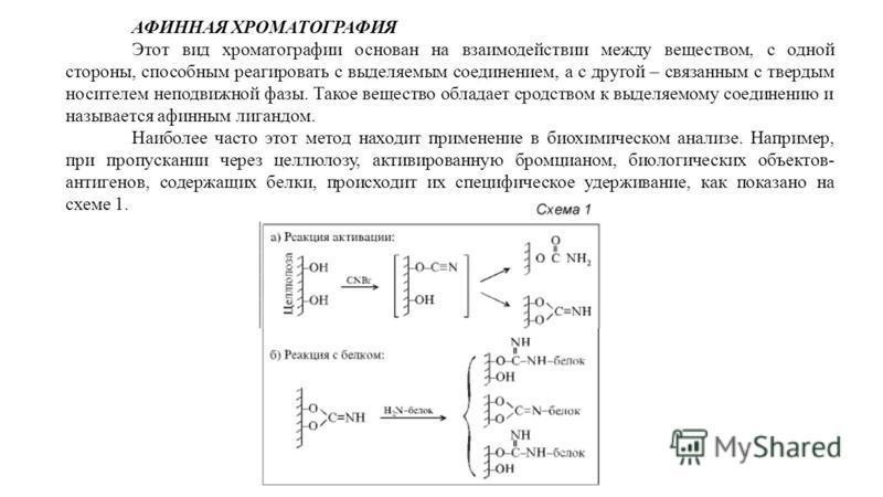 АФИННАЯ ХРОМАТОГРАФИЯ Этот вид хроматографии основан на взаимодействии между веществом, с одной стороны, способным реагировать с выделяемым соединением, а с другой – связанным с твердым носителем неподвижной фазы. Такое вещество обладает сродством к