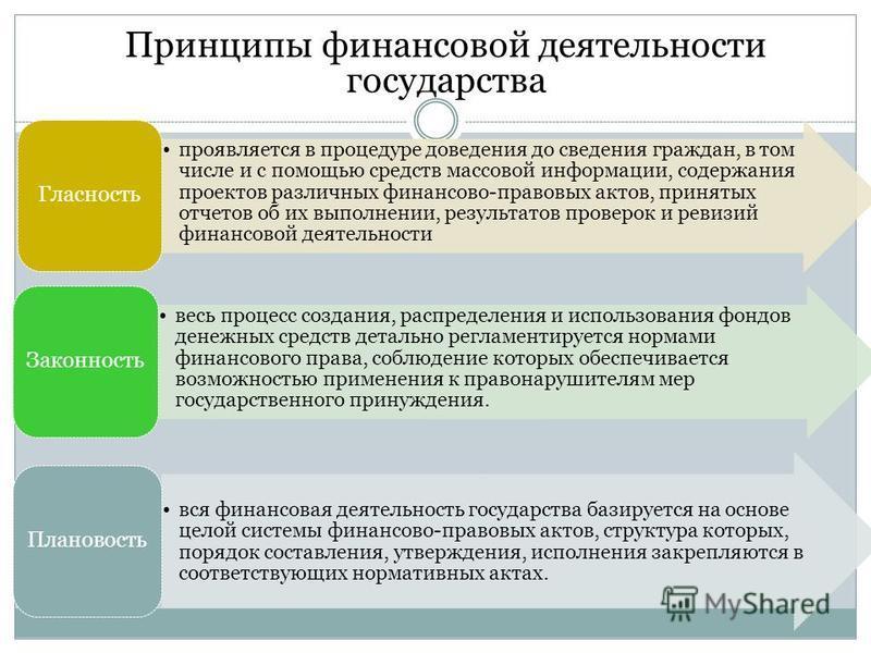 Принципы финансовой деятельности государства проявляется в процедуре доведения до сведения граждан, в том числе и с помощью средств массовой информации, содержания проектов различных финансово-правовых актов, принятых отчетов об их выполнении, резуль
