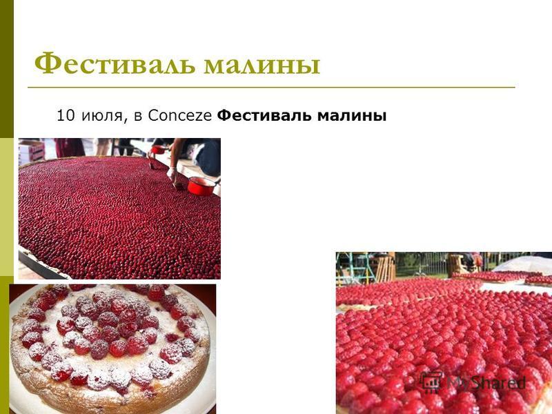 Фестиваль малины 10 июля, в Conceze Фестиваль малины