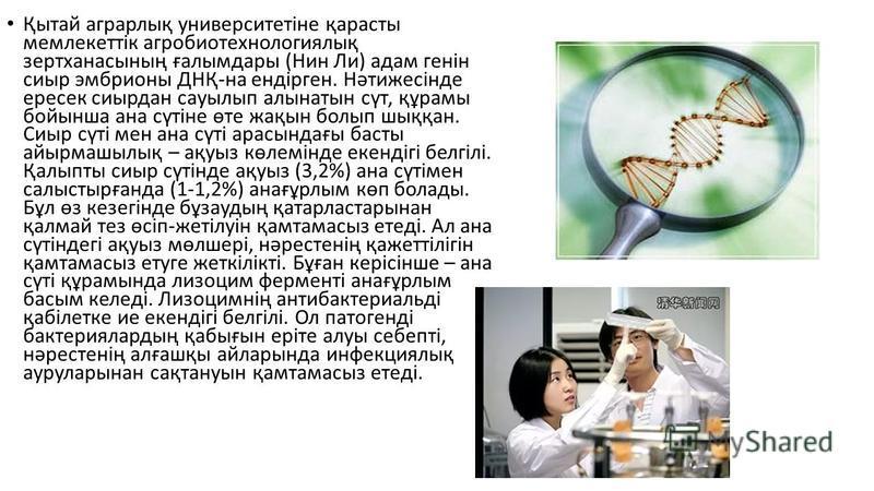 Қытай аграрлық университетіне қарасты мемлекеттік агробиотехнологиялық зертханасының ғалымдары (Нин Ли) адам генін сиыр эмбрионы ДНҚ-на ендірген. Нəтижесінде ересек сиырдан сауылып алынатын сүт, құрамы бойынша ана сүтіне өте жақын болып шыққан. Сиыр