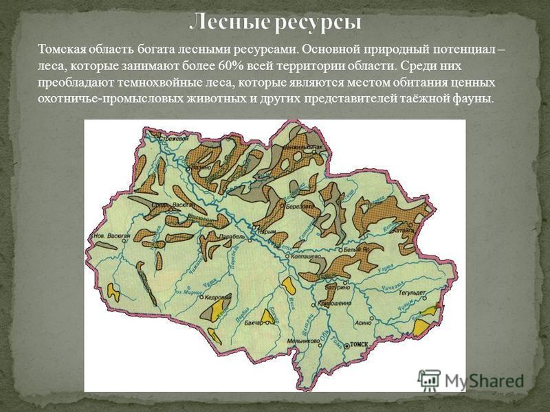 Томская область богата лесными ресурсами. Основной природный потенциал – леса, которые занимают более 60% всей территории области. Среди них преобладают темнохвойные леса, которые являются местом обитания ценных охотничье-промысловых животных и други