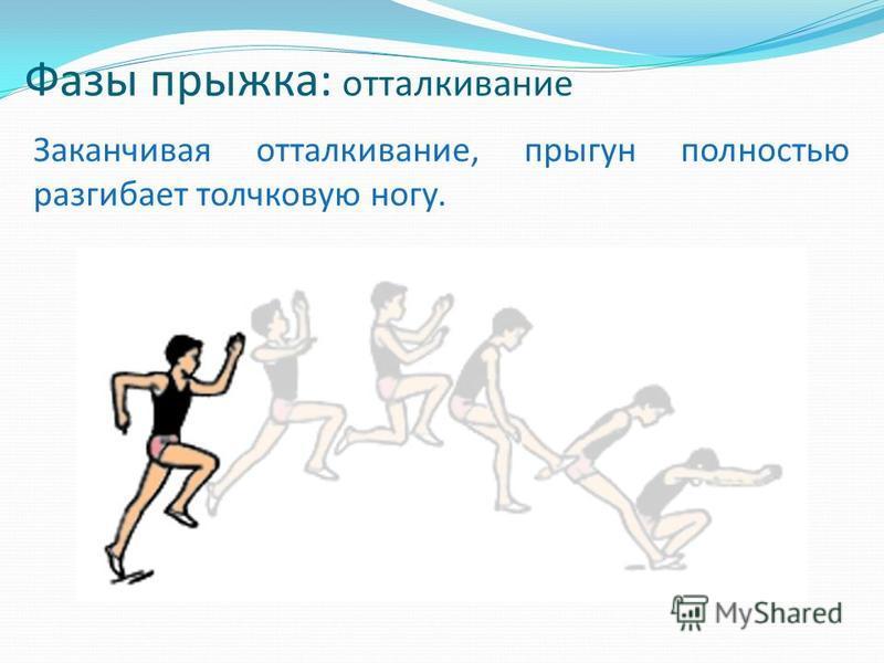 Фазы прыжка: отталкивание Заканчивая отталкивание, прыгун полностью разгибает толчковую ногу.