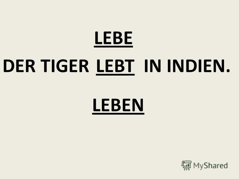 DER TIGER IN INDIEN. LEBEN LEBE LEBT