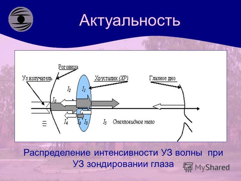 Актуальность Распределение интенсивности УЗ волны при УЗ зондировании глаза