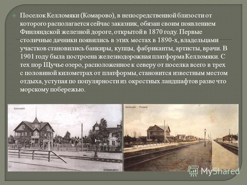 Поселок Келломяки (Комарово), в непосредственной близости от которого располагается сейчас заказник, обязан своим появлением Финляндской железной дороге, открытой в 1870 году. Первые столичные дачники появились в этих местах в 1890-х, владельцами уча