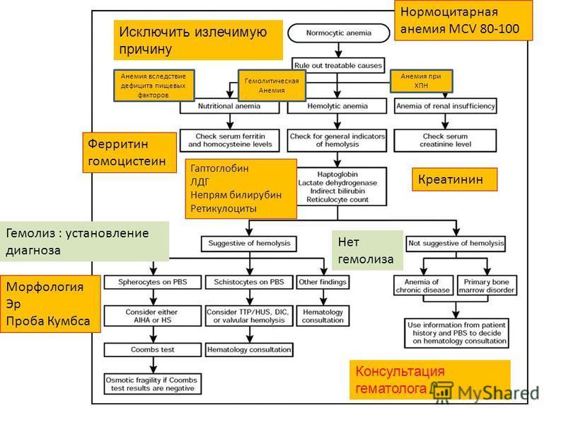 Анемия вследствие дефицита пищевых факторов Гемолитическая Анемия Анемия при ХПН Ферритин гомоцистеин Гаптоглобин ЛДГ Непрям билирубин Ретикулоциты Креатинин Нормоцитарная анемия MCV 80-100 Гемолиз : установление диагноза Морфология Эр Проба Кумбса Н