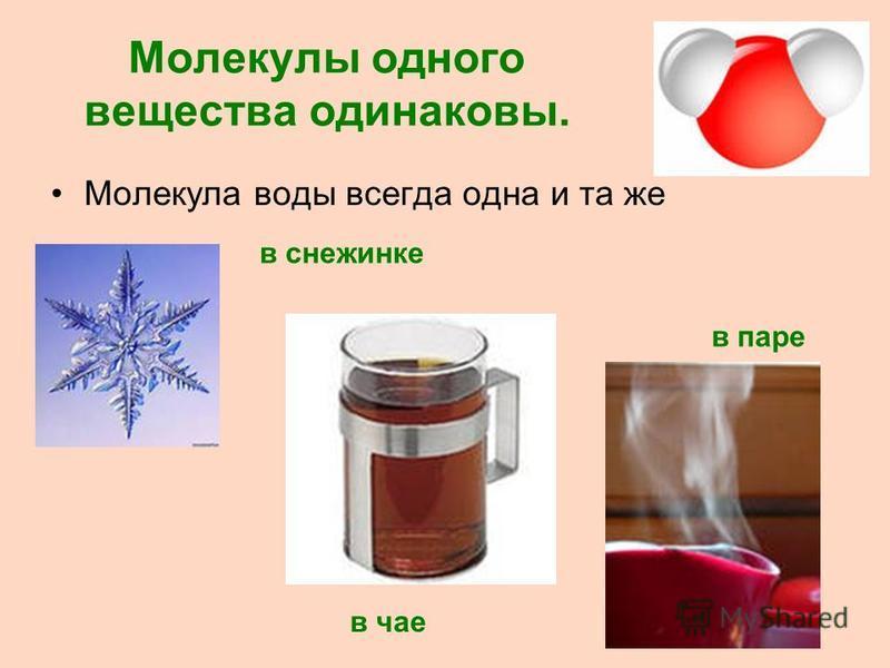 Молекулы одного вещества одинаковы. Молекула воды всегда одна и та же в снежинке в паре в чае