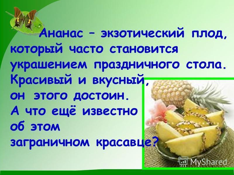 Ананнас – экзотический плод, который часто становится украшением праздничного стола. Красивый и вкусный, он этого достоин. А что ещё известно об этом заграничном красавце?