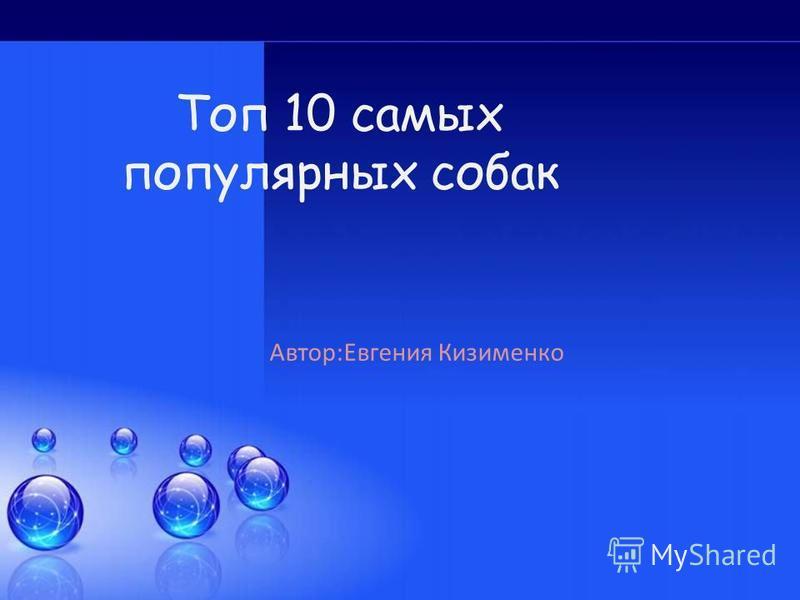 Топ 10 самых популярных собак Автор:Евгения Кизименко