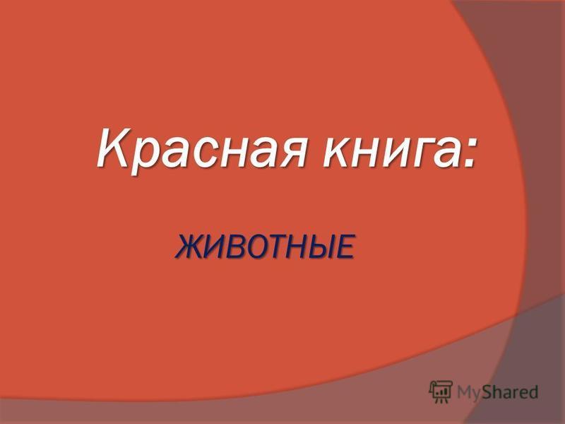 Красная книга: ЖИВОТНЫЕ