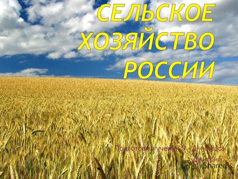 Подготовил ученик 9 «Д» класса Дмитрий.