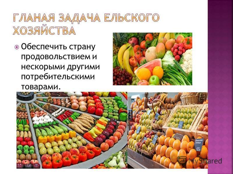 Обеспечить страну продовольствием и нескорыми другими потребительскими товарами.